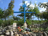 The smaller Blue Cross